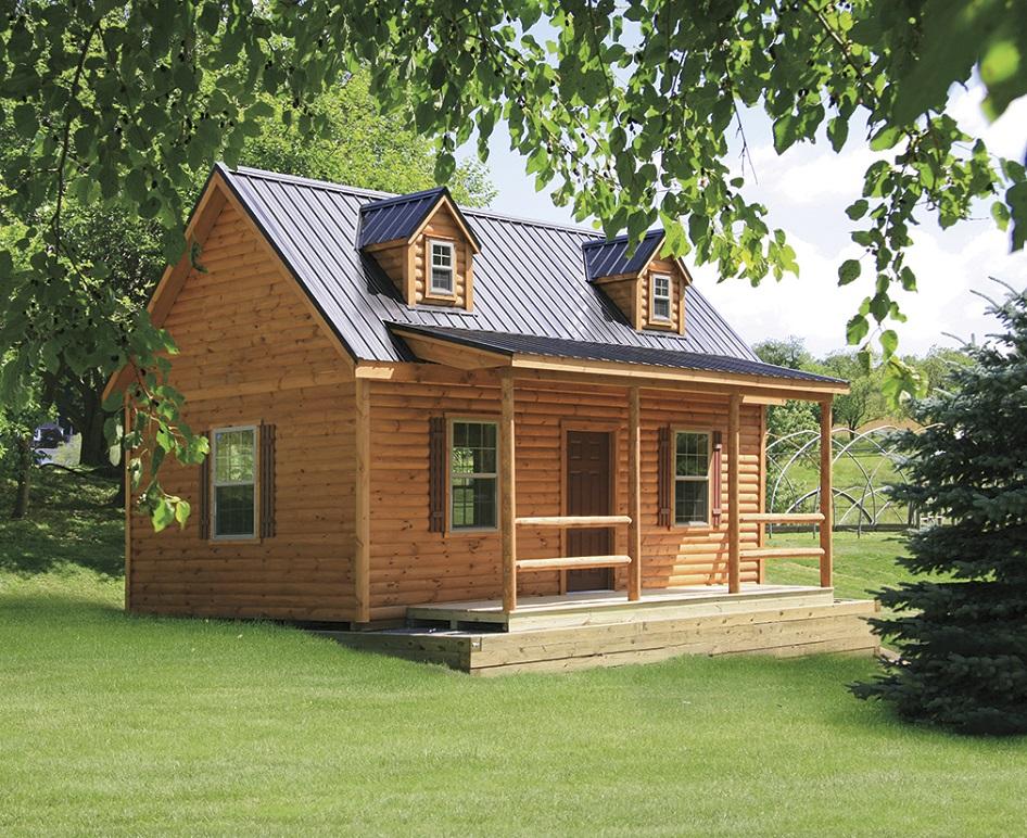 cabin home 1